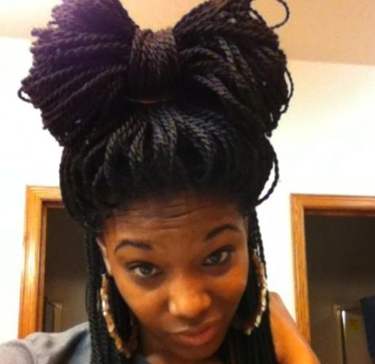 Senegalese Twist Braids Styles