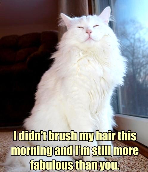I'm fabulous hair